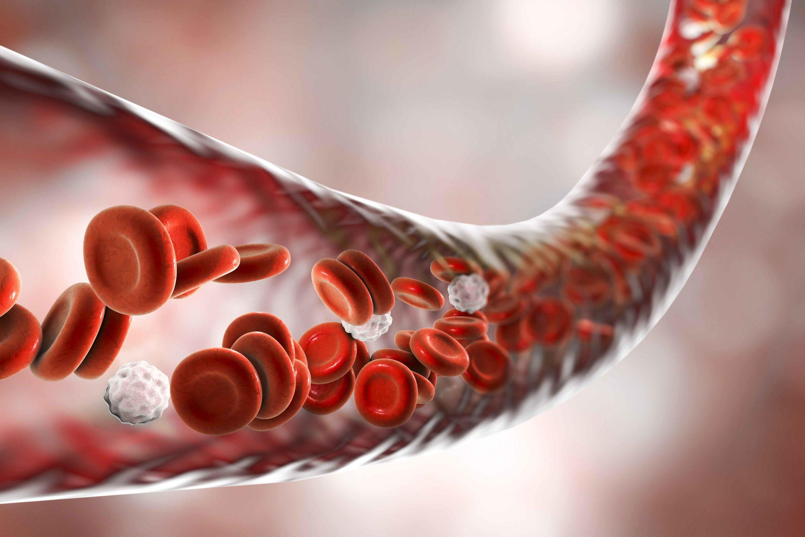 bio-ADM®- endothelial function biomarker